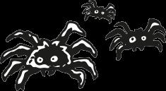 _0011_Spinnen