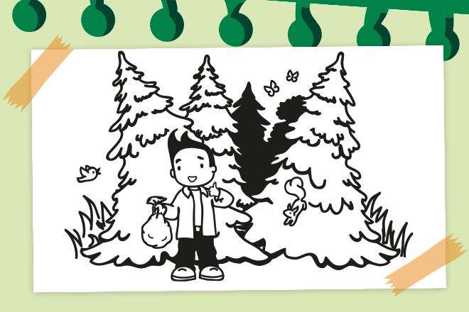 Beitragsbild Wald